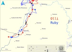 Die Flugroute von Olli und Ruby
